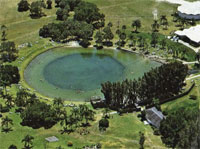 Warm Mineral Springs Florida